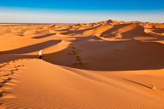 Mens en hond die in oranje duinen, de Sahara, Marokko wandelen