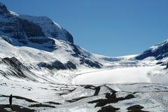 Mens en icefield Stock Foto