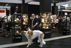 Mens en zijn honden bij markt Stock Afbeelding
