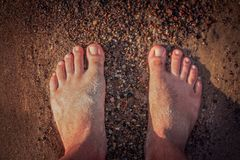 Mens feet on the beach. Close up of a feet of a man standing on the beach in summer Royalty Free Stock Photos
