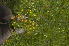 Mens feet standing on grass Royalty Free Stock Photos