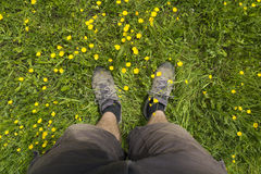 Mens feet standing on grass Stock Image