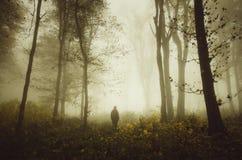Mens in geheimzinnig de herfstbos met mist royalty-vrije stock afbeelding