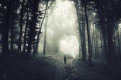 Mens in griezelig donker bos met mist op Halloween royalty-vrije stock fotografie