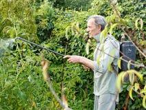 Mens het bespuiten van pesticide op de tuin van het land Stock Fotografie