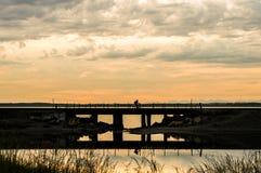 Mens het bicycling over een spoorwegschraag op bewolkte zonsondergangavond Royalty-vrije Stock Afbeelding