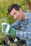 Mens het knippen tak in tuin royalty-vrije stock afbeeldingen