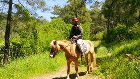 mens het leren paardrijden, openlucht stock footage