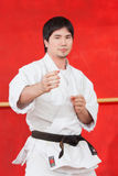 Mens het praktizeren karate royalty-vrije stock fotografie