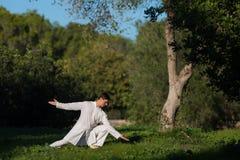 Mens het praktizeren tai-Chi in openlucht in het park Stock Afbeelding