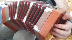 Mens het spelen concertina stock afbeeldingen