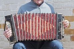 Mens het spelen concertina royalty-vrije stock fotografie