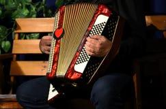 Mens het spelen harmonika, handen royalty-vrije stock foto