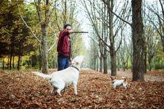 Mens het spelen met honden in park Royalty-vrije Stock Afbeelding