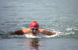 Mens het zwemmen vlinderslag Royalty-vrije Stock Foto