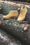Mens leather casual shoes. On wood in the forest Royalty Free Stock Photography