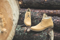 Mens leather casual shoes. On wood in the forest Stock Image