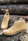 Mens leather casual shoes. On wood in the forest Stock Photography