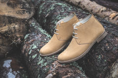Mens leather casual shoes. On wood in the forest Stock Photos