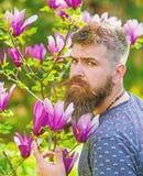 Mens met baard en snor op strikt gezicht dichtbij bloemen op zonnige dag Tuinmanconcept Hipster geniet dichtbij van de lente royalty-vrije stock foto