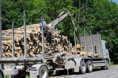 Mens met de speciale vrachtwagen van de materiaallading met logboeken royalty-vrije stock foto