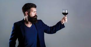 Mens met een glas rode wijn in zijn handen Baardmens, gebaarde, meer sommelier proevende rode wijn Sommelier, degustator met royalty-vrije stock foto