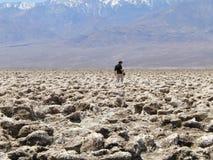 Mens met fotocamera in woestijn stock afbeelding