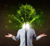 Mens met groen boom hoofdconcept Stock Afbeelding