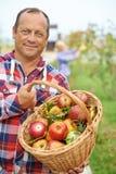 Mens met mand van appelen Royalty-vrije Stock Foto