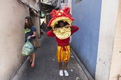 Mens met masker van de leeuw het hoofddans royalty-vrije stock afbeelding
