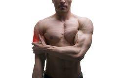 Mens met pijn in schouder, pijn in spier mannelijk lichaam, dat op witte achtergrond wordt geïsoleerd stock afbeeldingen