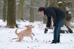 Mens met puppy Royalty-vrije Stock Foto
