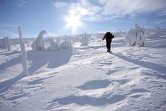 Mens met sneeuwschoenen Royalty-vrije Stock Afbeeldingen
