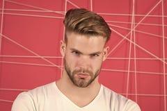 Mens met varkenshaar op strikt geconcentreerd gezicht, roze achtergrond E masculinity royalty-vrije stock afbeeldingen