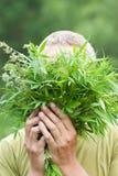 Mens met verse cannabis Stock Foto