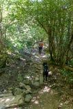 Mens met zijn hond op de bronroute het koper Fuentes DE Carrionas natuurreservaat spanje stock afbeelding
