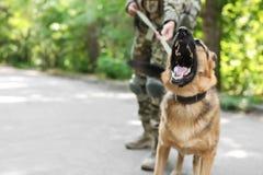 Mens in militaire eenvormig met Duitse herderhond Stock Fotografie