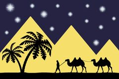 Mens op de kameel de piramides. vector illustratie