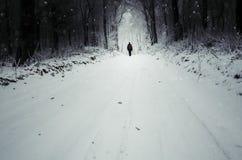 Mens op de winterweg met sneeuw en sneeuwvlokken het vallen stock fotografie