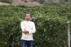 Mens op een achtergrond van wijngaarden Stock Foto's