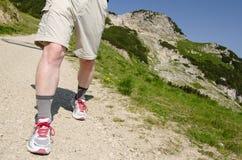 Mens op een wandelingssleep in de tirolean bergen royalty-vrije stock foto