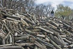 Mens op het brandhout voor verkoop Stock Fotografie