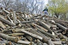 Mens op het brandhout voor verkoop Royalty-vrije Stock Foto's