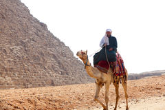 Mens op Kameel bij piramides Stock Afbeelding