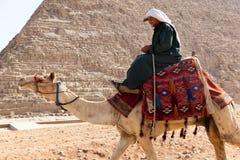 Mens op Kameel bij piramides Stock Fotografie