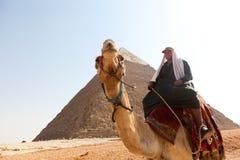 Mens op Kameel bij piramides Stock Foto