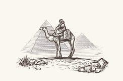 Mens op Kameel in woestijn dichtbij Piramidesillustratie Vector Royalty-vrije Stock Foto's