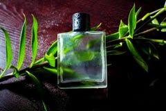 Mens parfume Stock Fotografie