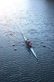 Mens Rowing. Two men training royalty free stock photography