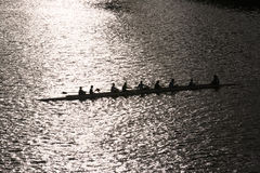 Mens rowing team. At dusk Stock Image
